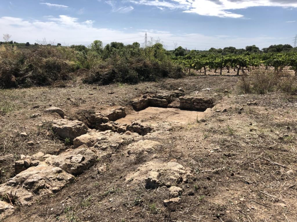 Vista parcial del jaciment de Mas dels Frares, 2019. Foto: ICAC
