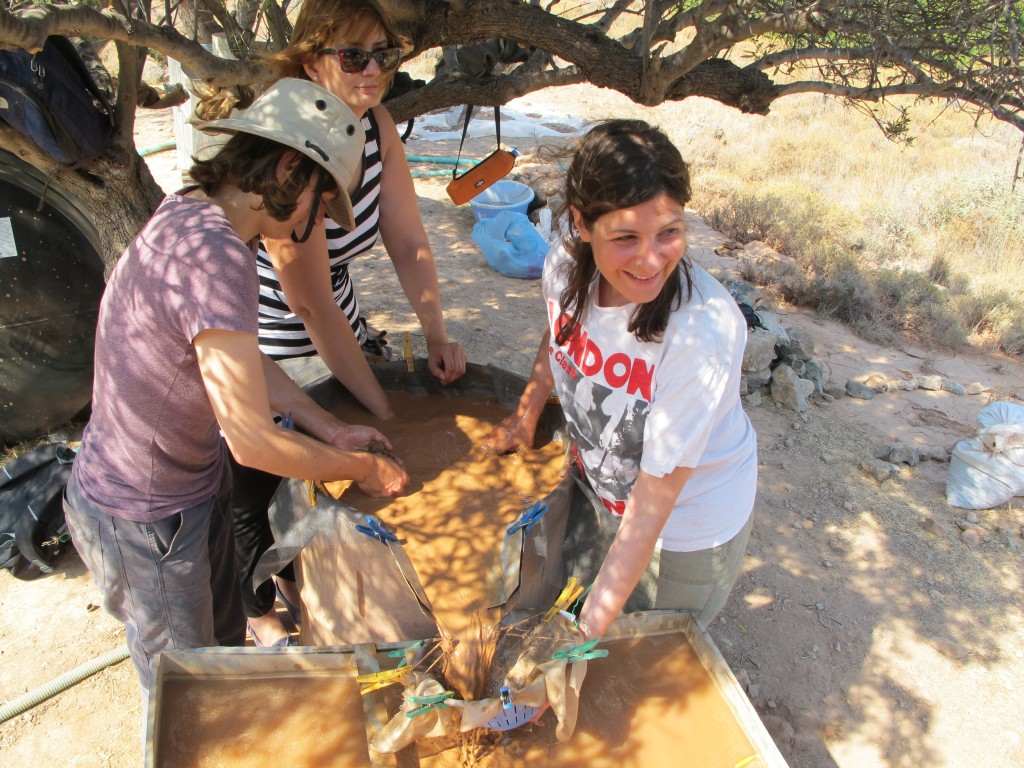 Archaeological works in Palaikastros, 2019 (@ A. Livarda)