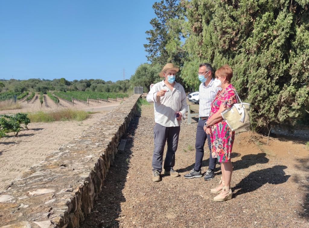 Josep Maria Macias (ICAC) ha acompanyat l'alcalde de Constantí, Òscar Sánchez, i la regidora de Cultura, Dolors Fortuny, en una visita al jaciment de Mas dels Frares. Foto: ICAC.