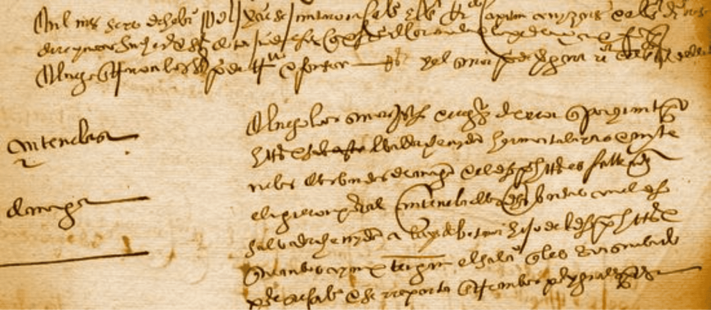Mid 16th century Council manuscript with sentinel provisions. Luckily for us, many local archives have been fully transcribed and digitalised!
